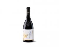 Ένα Ελληνικό Ξινόμαυρο Κρασί με Παγκόσμια Αναγνώριση
